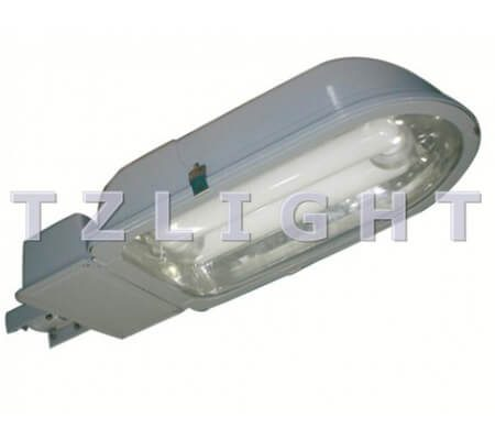 induction street light