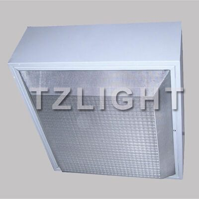 induction ceiling petrol light