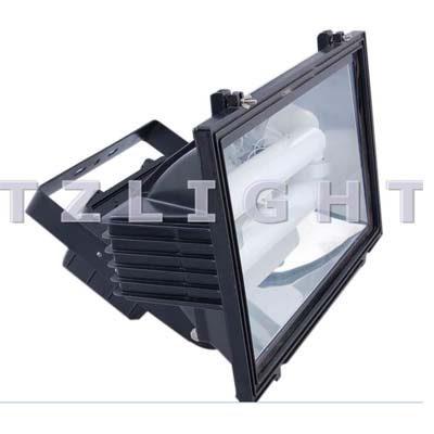 induction spot light
