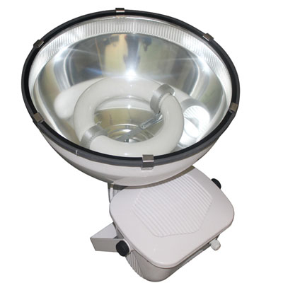 induction spot fixture